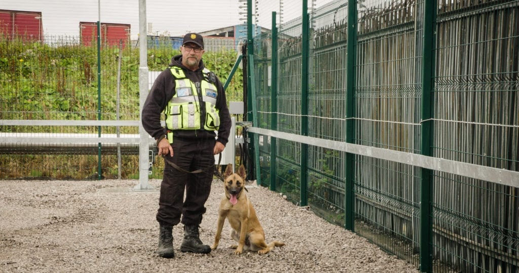 Guard Dogs, Detection & Sniffer Dogs - Warrington, Cheshire, Greater Manchester, Liverpool, Chester, UK